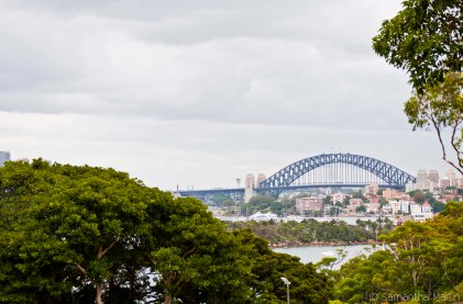 Sydney Harbour Bridge from Taronga
