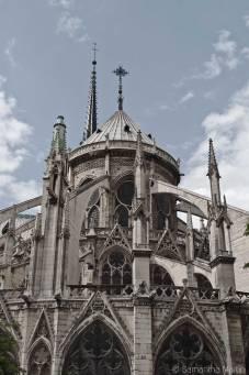 Notre Dame portrait
